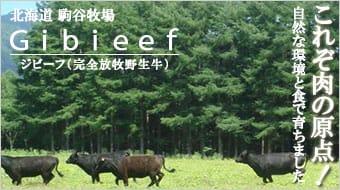 ジビーフ(完全放牧野生牛)